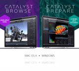Sony Catalyst Browse