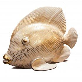 Pesce 4260/O