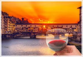 WINETOUR  privato con visita guidata di Firenze